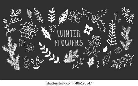 Winter flowers. Hand drawn ink illustration. Black and white floral background.