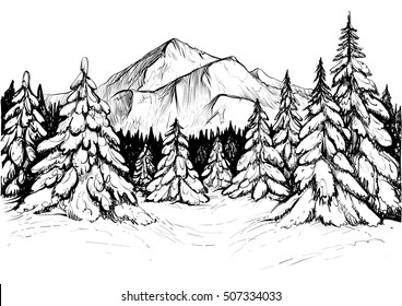 Winter forest sketch. Black and white vector illustration of snowy firs and mountain peak. Hand drawn winter scene, line art. Realistic drawing.