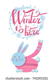 Winter is here little gray hare in sweater icon isolated on white background. Vector illustration with animal with long ears in pink cloth with scarf