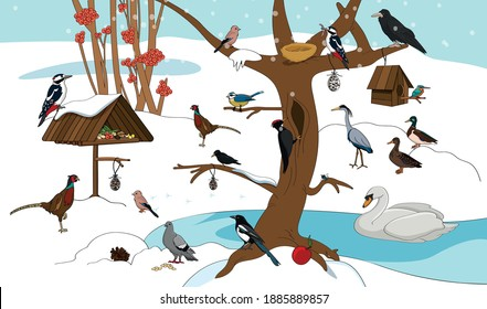 winter landscape with a lot of birds
