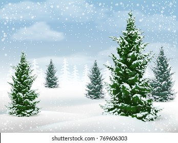 Winter landscape with fir trees. Frosty day in a pine forest. Vector background.