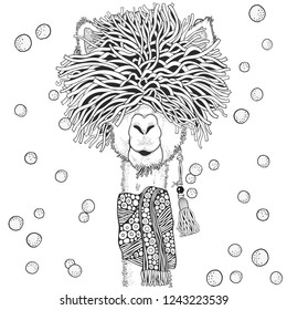 Winter llama. Coloring Book page for Adult and children in doodle style. Black and white  background. Hand-drawn christmas lama.