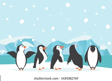 Winter North pole Arctic landscape penguin