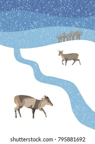 Winter snow scene with muntjac deer