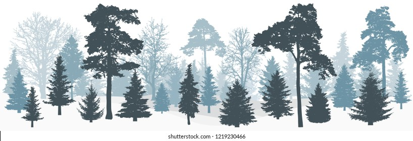 Winter snowy forest (trees: spruces, pines, oak and etc.) silhouette, panorama. Vector illustration.