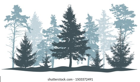 Winter trees silhouette. Beautiful fir trees and pines. Vector illustration.