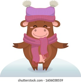 Winter vector illustration with cartoon animal character isolated on white background. Cute happy cow.