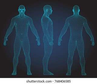 Wire frame human full body in virtual reality. Medical blue print scanned 3D model. Polygonal technology design. Front, Back, Side view