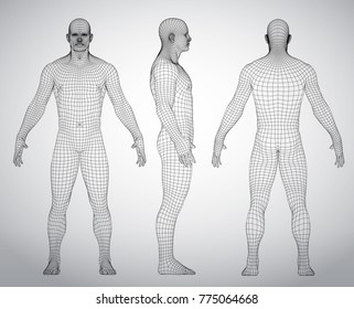 Wire frame human full body in virtual reality. Medical blue print scanned 3D model. Polygonal technology design. Front, Back, Side view. Set