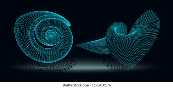 Wireframe 3D surface with nautilus. Background abstract vector image of a for presentations. Network cyber technology. Futuristic perspective grid background texture.