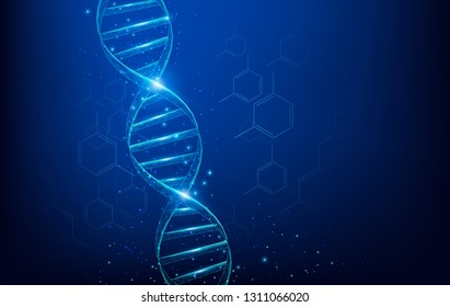 Wireframe DNA molecules structure mesh low poly consisting of points, lines, and shapes on dark blue background. Science and Technology concept.