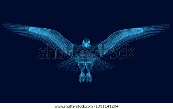 Wireframe Eagle Has Spread Wings 3d Stock Vector (Royalty Free