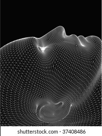 Wireframe head. Still life.Vector