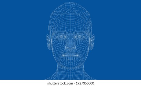 Wireframe portrait of a young beautiful girl. Ponytail hairstyle. Vector 3d rendering