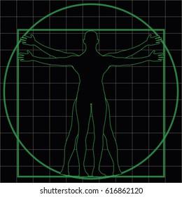 wireframe silhouette of vitruvian man as imitation of leonardo one. vector illustration