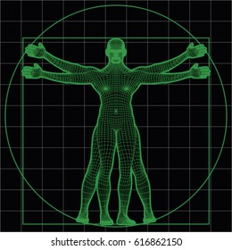 wireframe vitruvian man. vector illustration