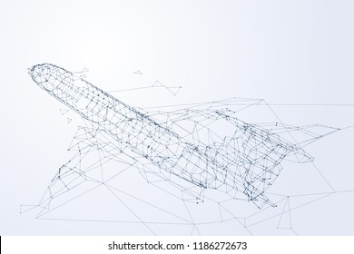 Wirframe plane flying up, network of the airplane and technology concept, vector art and illustration.