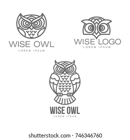 wise hand drawn sitting wise owl, owl head closeup set. brand logo stylized design silhouette pictogram. Line icon bird isolated illustration on a white background.
