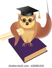 The wise owl in a hat and with a book