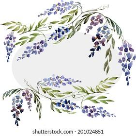 wisteria,  frame, watercolor