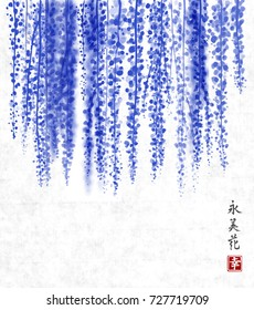 Wisteria hand drawn with ink on rice paper background. Contains hieroglyph - happiness, eternity, beauty, flower. Traditional oriental ink painting sumi-e, u-sin, go-hua. Bunches of flowers.
