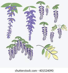 Wisteria set  include Japanese comics  paint style and flat vector with leaves isolated on white background  illustrations vector