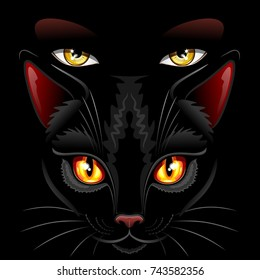 Witch Black Cat Eyes Sorcery