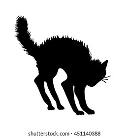 witch cat black vector illustration isolated