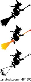 Witch on a broomstick, witch, hag, harridan,
