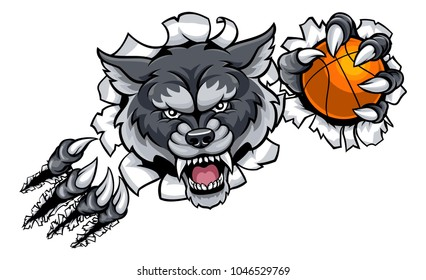 A wolf angry animal sports mascot holding a basketball ball and breaking through the background with its claws