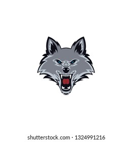 wolf face isolated on a white background
