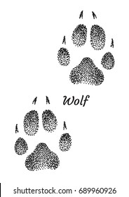 Wolf footprint illustration, drawing, engraving, ink, line art, vector
