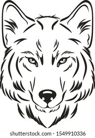Wolf head. Outlined drawing. Vector