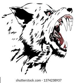 Wolf - Illustration,  Vector illustration of wolf face