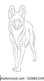 wolf lines, vector, white background