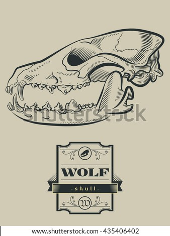 Wolf Skull Diagram Trusted Wiring Diagrams