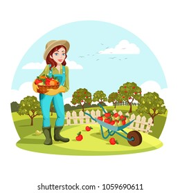 Woman agrarian gathering garden apples or picking pears. Female farmer or gardener standing near wheelbarrow with fruits. Organic and healthy food cultivation, natural nutrition and countryside theme