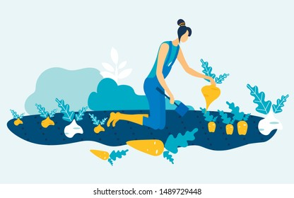 Woman in Blue Jumpsuit with Spade in Hand on Garden Bed. Grow and Harvest Vegetable. Vector Illustration. Natural Product. Woman Harvest in Garden. Farm Products. Grow Vegetables Fruit. Farm Business.