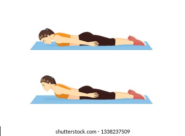 Woman doing The back extension exercise in 2 step. Illustration about strengthens back muscles with Pilates workout.