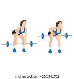 Woman doing Bent over barbell rows exercise. Flat vector illustration isolated on white background