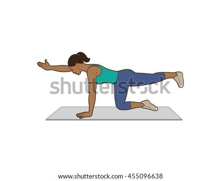 Woman Doing Bird Dog Exercise Stock Vector Royalty Free 455096638