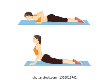 Woman doing Cobra Stretch Exercise on blue mat in 2 step. Illustration about Yoga pose relieve to lower Back Pain.