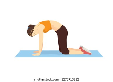 Woman doing Exercise with Cat Cow pose to stretch back muscle and promote spinal flexibility. Illustration about workout posture.