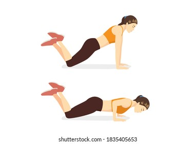 Woman doing exercise with Knee Push Up in 2 steps. Cartoon for workout diagram in exercise posture for flat abs.