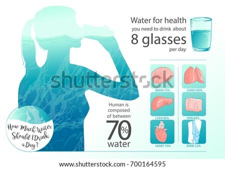 Woman Drinking Glass Water Human Body Stock-Vektorgrafik (Lizenzfrei ...