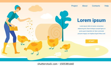 Woman Feeding Chickens. Website Monitor Screen. Vector Illustration. People on Farm. New Technologies. Farm Business. Advertising Image. Website Screenshot. Feed Poultry in Village.