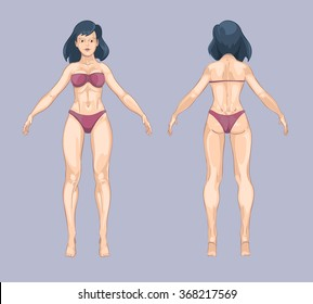 Woman or female body in cartoon style. Front and back standing pose. Beauty lady, person adult model, fashion bikini underwear. Vector illustration