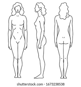 Woman. Figure of a person in front, back, side. Three angles for diagrams