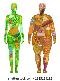 Woman, food in body, thin thick, harm use,proper diet  vector illustration