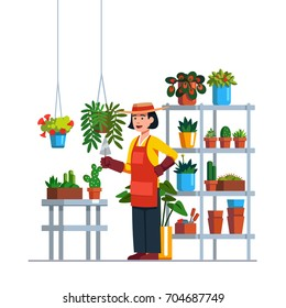 Woman gardener or florist working in botanical garden or home backyard terrace orangery, planting flowers. Rack, plants in pots, hanging baskets. Flat vector illustration isolated on white background.
